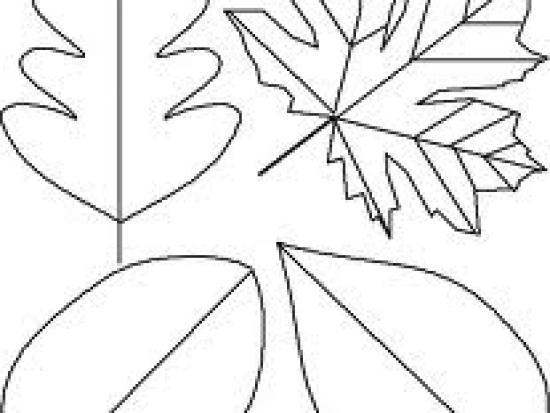 Thanksgiving Stencils To create stencils.