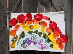 Rainbow Flower Banner