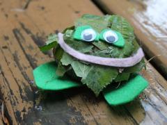 Frog Rock