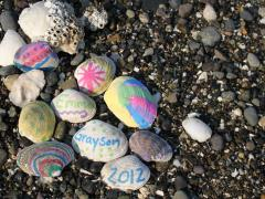 Summer Seashell Treasures