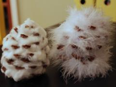 Pinecone Snow Owl