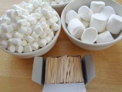 Marshmallow Sculptures