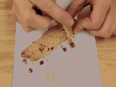 Chocolate Chip Cookie + Toothpick = Fossil Dig!