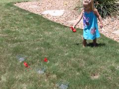 Fruit Toss Game