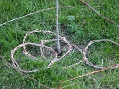 Stick Quoits