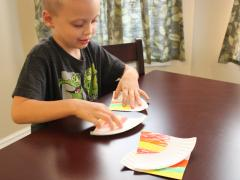 Paper Plate Fraction Puzzles